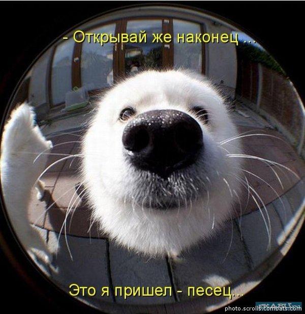Силуанов уверяет, что экономика РФ начнет восстанавливаться к концу года - Цензор.НЕТ 2125